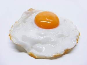 What does cholesterol do to our brains, eggsactly? - photo of fried egg