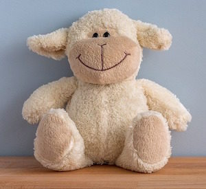 Serial Position makes studying easier - photo of cuddly toy